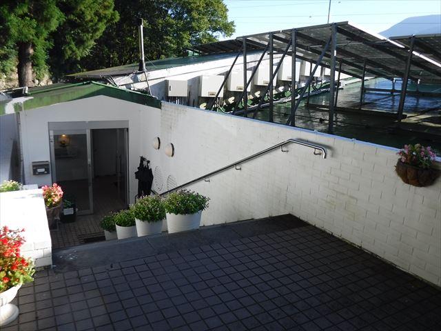 ドッグパレスリゾート箱根エントランス